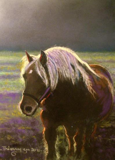 Brume ( tableau à vendre).         250€