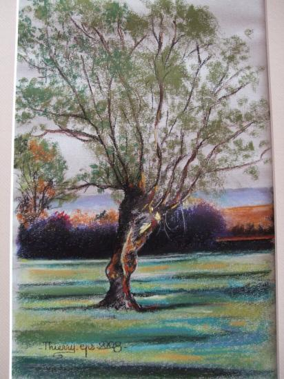 paysage de mellecey 2008 ( tableau à vendre).         250€