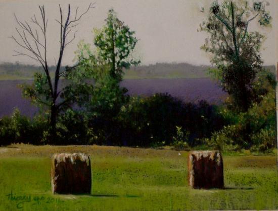 paysage de moselle 2011 002 ( tableau à vendre).     350€